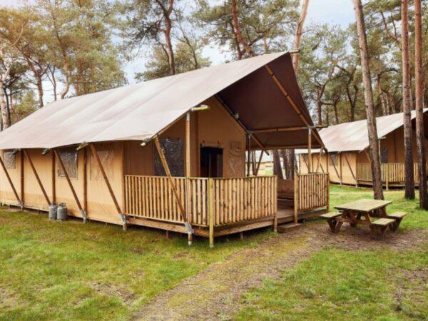 safari-tent-glamping