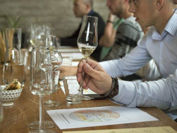 wijnboerderij-vakantiehuis-wijnen-proeven