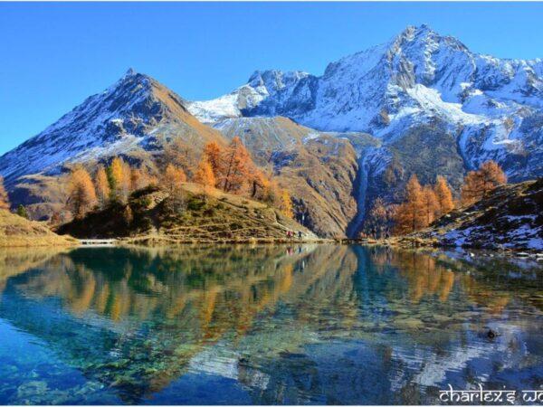 glamping-zwitserland-pareltje-bijzondere-locatie