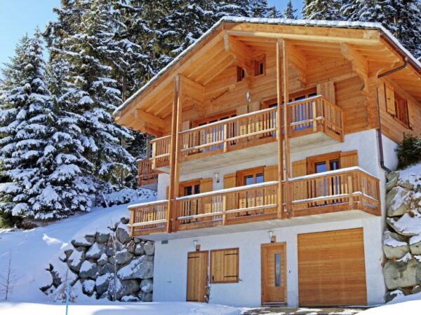 wintersport-chalet-lodge