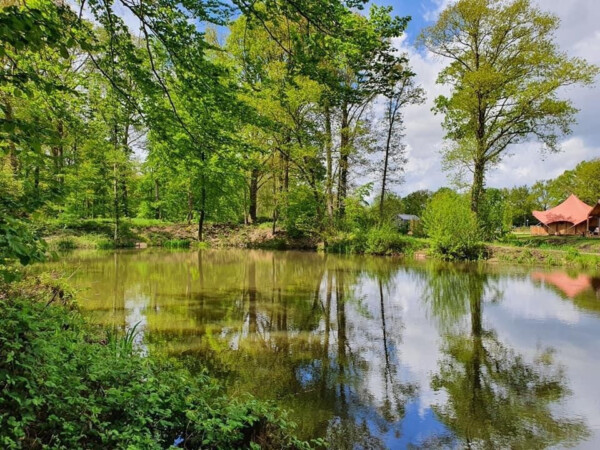 luxe-glamping-in-nederland
