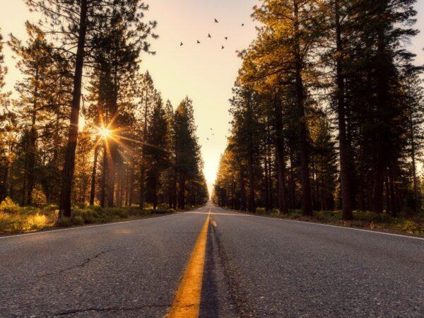 roadtrips-huwelijksreis