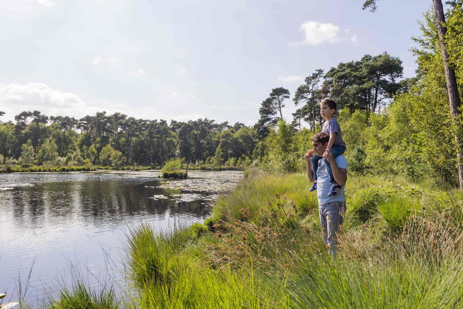 Supertrips - Glamping midden in de natuur in Brabant