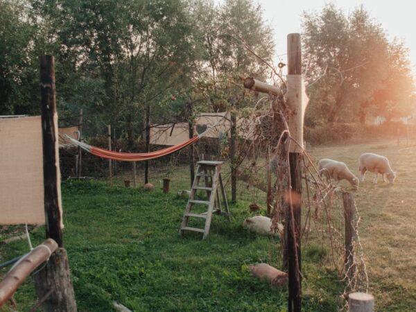 schattig-huisje-in-gelderland