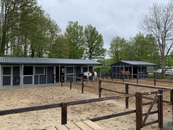 vakantie-met-paard