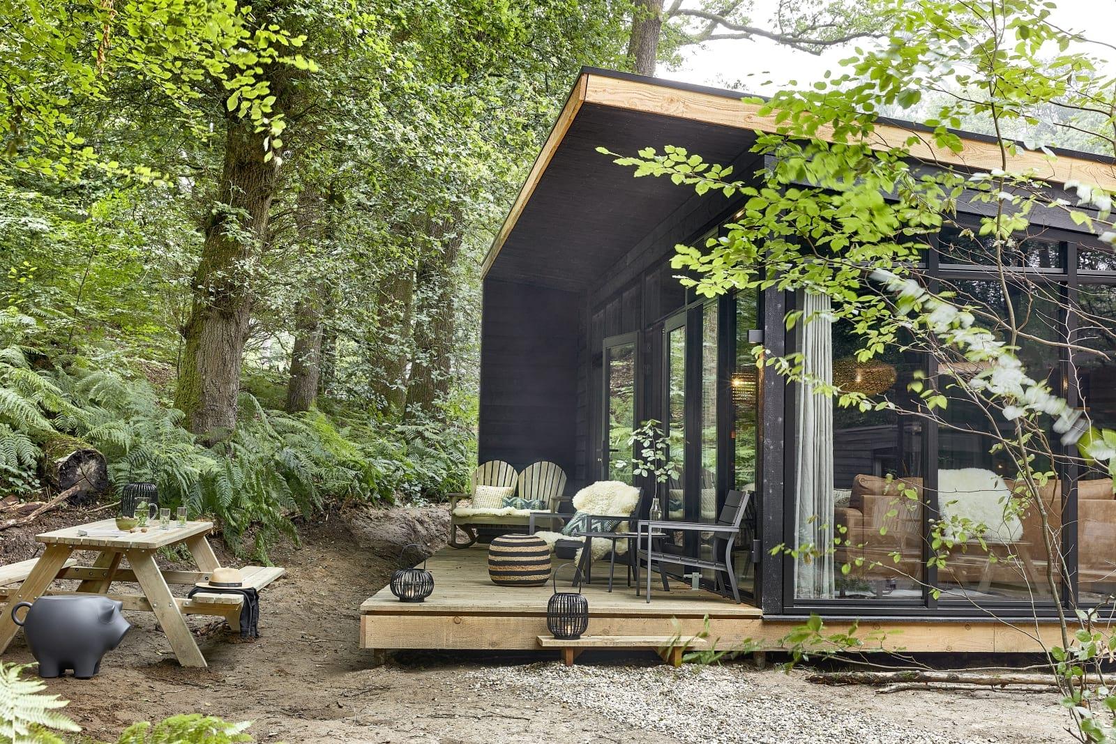 Supertrips - Forest Cabin midden op de Veluwe